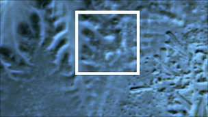 An infra-red satellite image shows a buried pyramid, located in the centre of the highlight box.