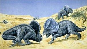 protoceratops_2