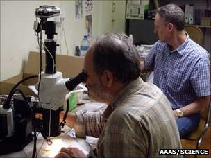 Francesco d'Errico examining the components of the toolkits under a microscope