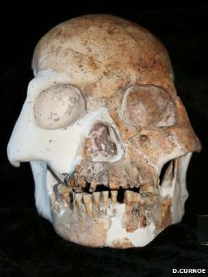 Scientists say the specimens display features that are quite distinct from fully modern humans