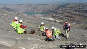 The Cerrejon open-face coal mine where the fossils were discovered