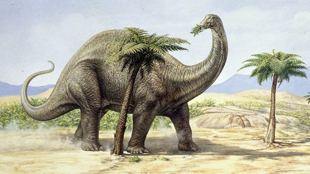 Apatosaurus, formerly known as Brontosaurus, produced a lot of wind