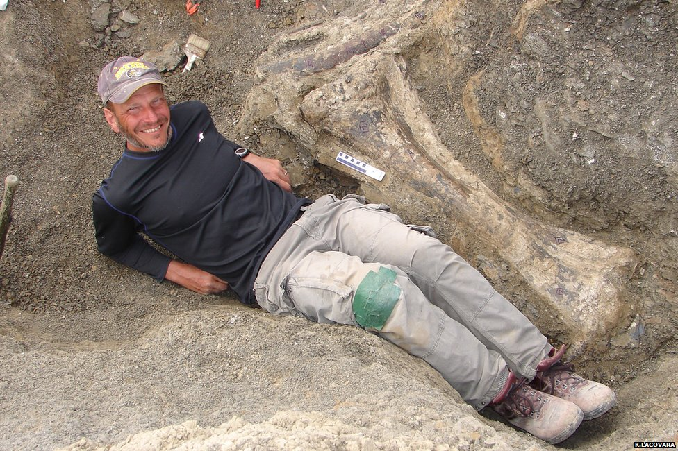 The fossil haul is giving scientists remarkable new insights into the lives of the titanosaurs