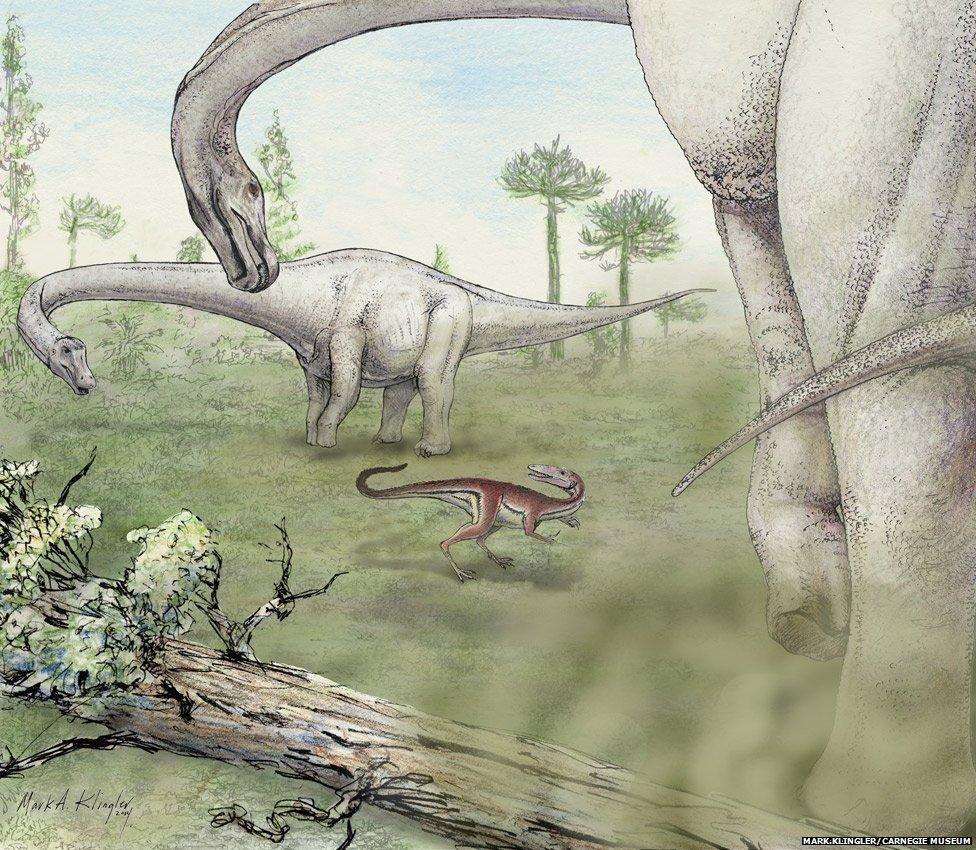 dreadnoughtus_6