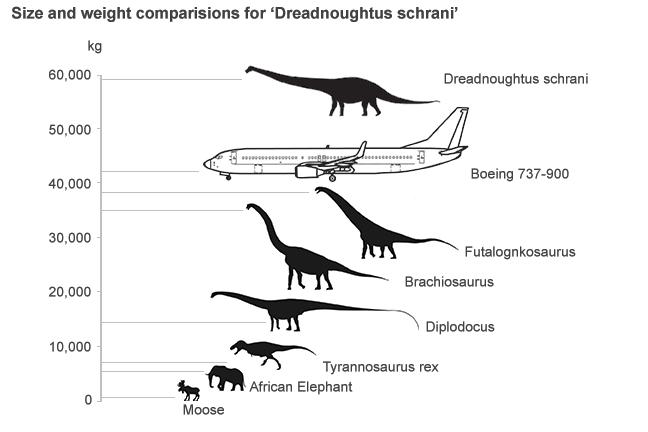 dreadnoughtus_size